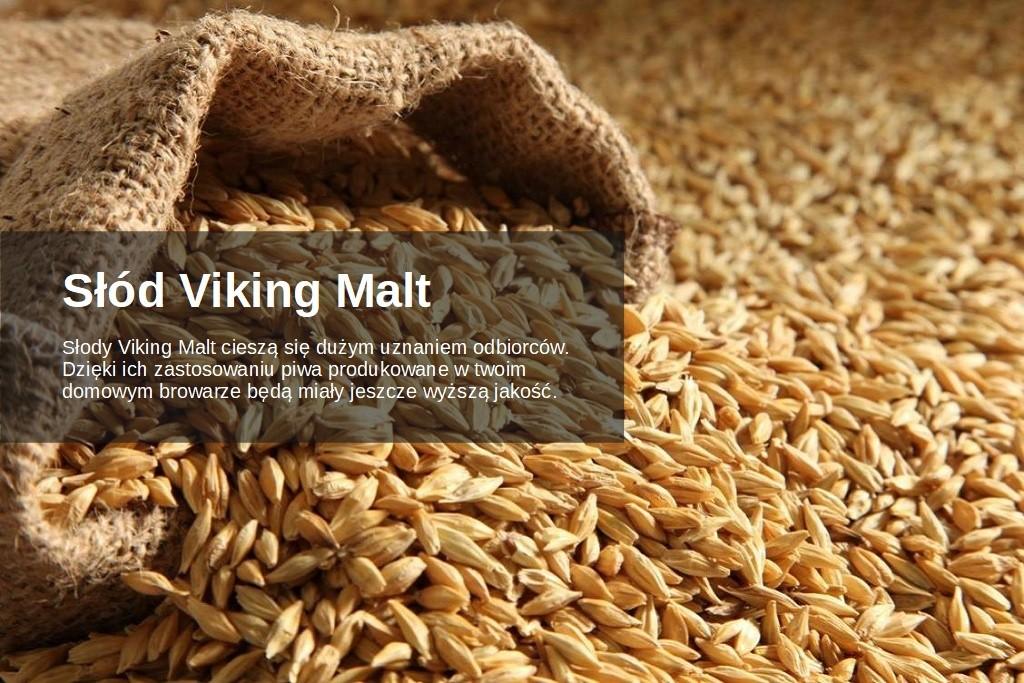 2_viking-malt-polska